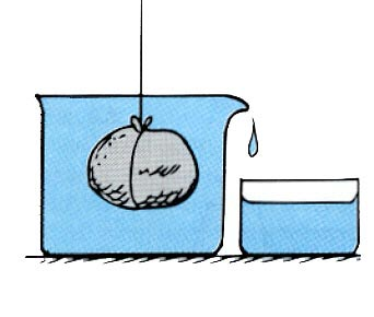 DBF-BlockII-BoatBuilding - Archimedes Principle